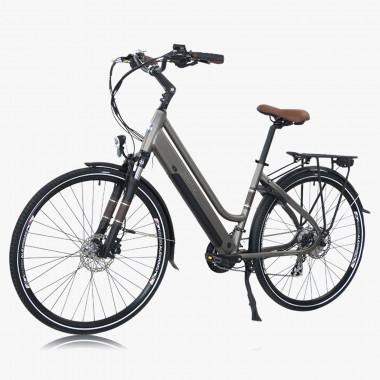 Zenith E-Bike Classic Deluxe anthrazit