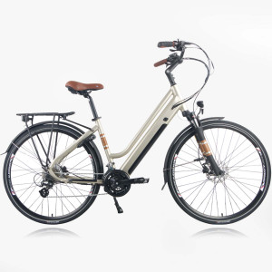 Zenith E-Bike Classic Deluxe Plus ZCL °02 Champagner